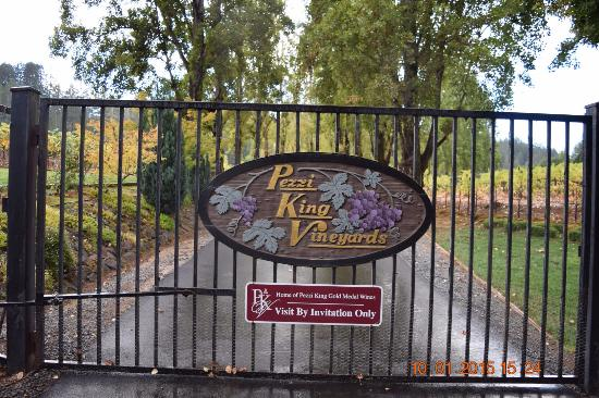Pezzi King Winery: Entering the ranch