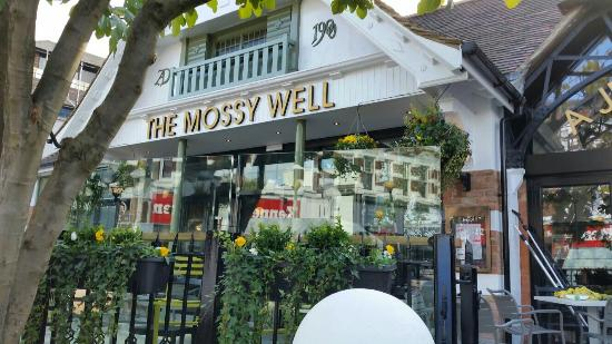 The Mossy Well