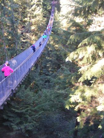 North Vancouver, Kanada: Capilano Suspension Bridge