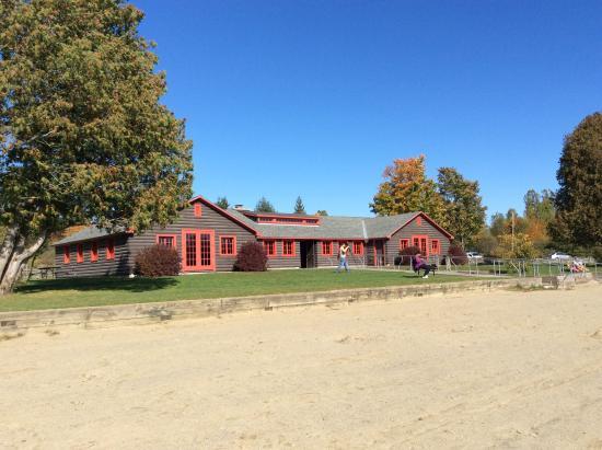 Elmore, VT: Face au lac... Toilettes, salle avec foyer... Super propre et beau!