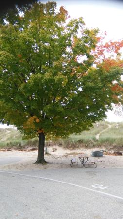 Pentwater, MI : Charles Mears State Park
