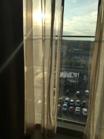 Homewood Suites St. Louis - Galleria: view and torn curtain in 906