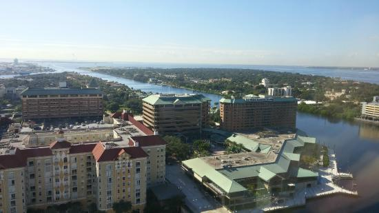 The Westin Tampa Waterside: View of the Westin from the Marriott that we explored for fun.
