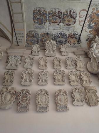 University of Padova: Университет Падуи