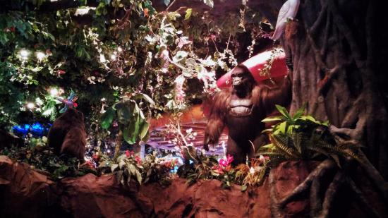 Rainforest Cafe Reservations Disney Springs