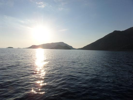 The Olive Tree Studios: Sunset on the boat trip