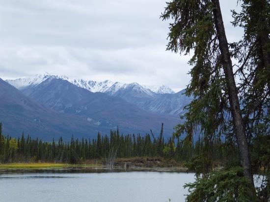 Slana, AK: Wrangell St. Elias NP  from Nabesena Road