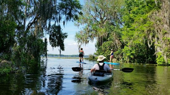 Umatilla, FL: Lake Harris - Hickory Point Tour