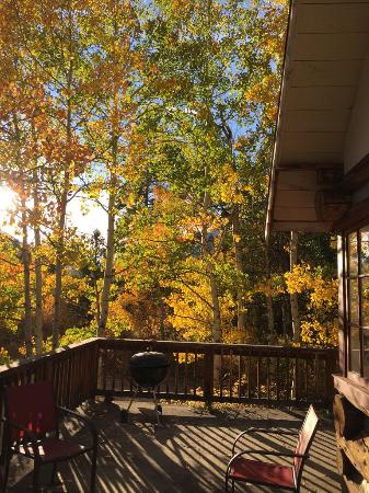 Twin Lakes, CO: View from porch of Trails End cabin