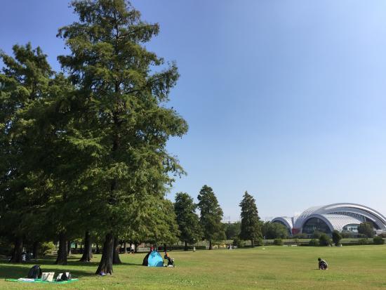 Tatsuminomori Kaihin Park