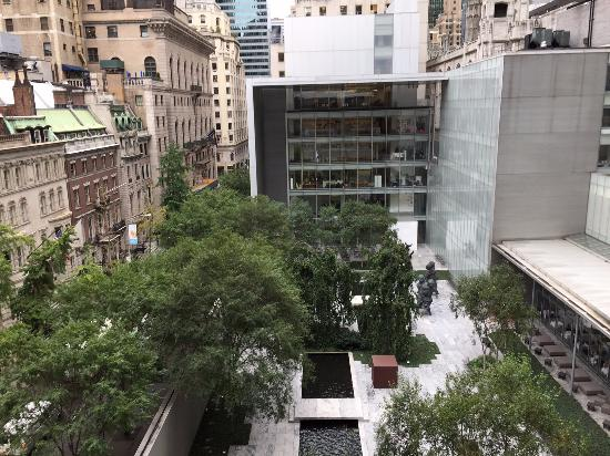 moma courtyard picture of the museum of modern art moma new york city tripadvisor. Black Bedroom Furniture Sets. Home Design Ideas