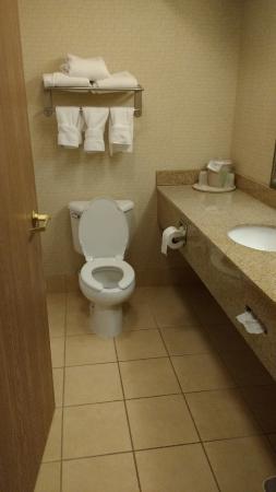 Holiday Inn Express Ashland : Enclosed bathroom