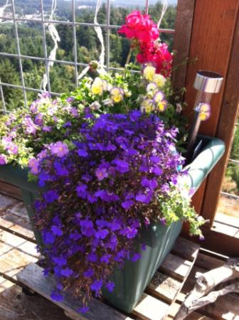 Double Mountain Bed and Breakfast: Pots of flowers grace the decks.