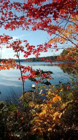 Poland Springs, Μέιν: Sunny fall day