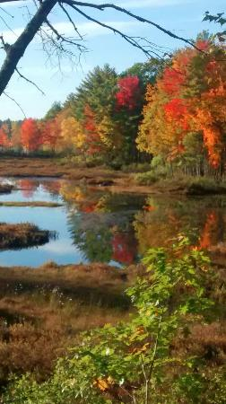 Range Ponds State park: Sunny fall day