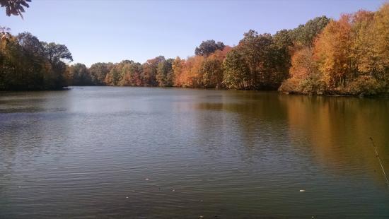Portersville, Pennsylvanie : waterview (north shore)