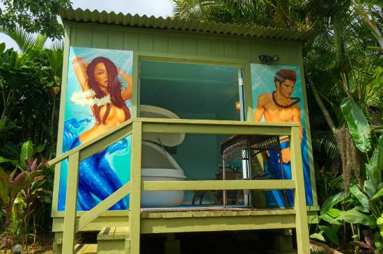 Kilauea, HI: Private Hawaiian Mermaid Hut just for the Pod