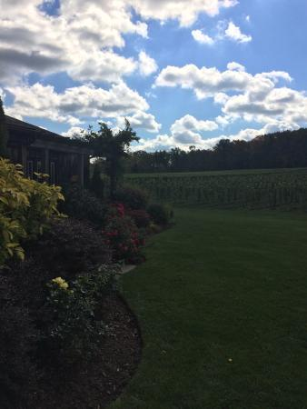 Thirty Bench Wine Makers: Very pretty property.