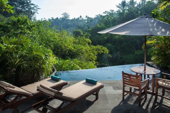 Private Pool Of One Bedroom Pool Villa Picture Of Bidadari Private Villas Retreat Ubud Tripadvisor