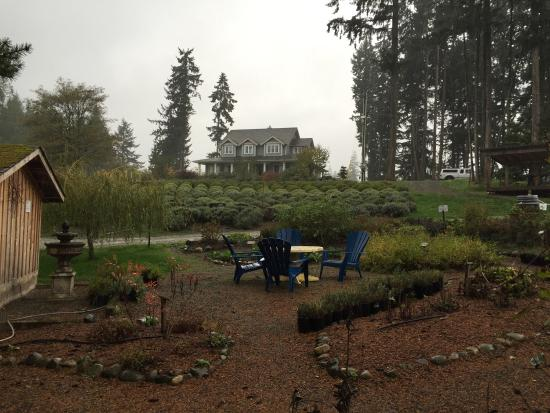 Cobble Hill, Canada : Rainy fall day at Danali