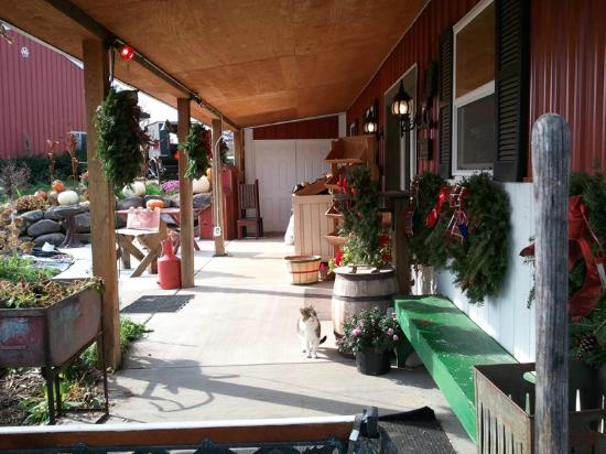 Simple Life Country Store LLC Photo