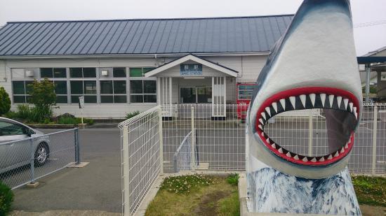 鮫のモニュメント