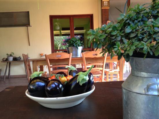 Azienda Agrituristica Il Pago: Verdure dell'orto