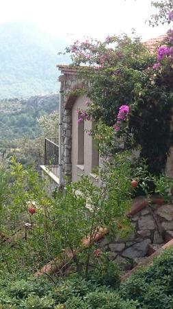 Kumlubuk, Турция: The Dionysos