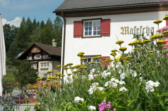 Berggasthaus Masescha