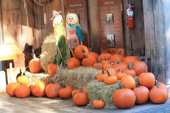 นอร์ทแวนคูเวอร์, แคนาดา: Getting ready for Halloween!!!!