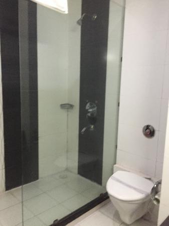 Hotel Royal Residency: Shower Area