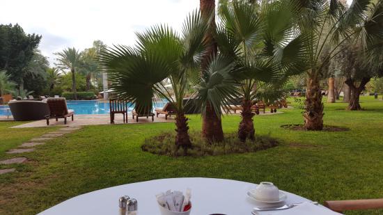 Vue de la terrasse Lagon & Jardins Palace ES SAADI