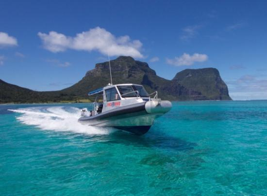 Pro Dive Lord Howe Island: MV Pinnacle - our custom built 9.5M dive vessel