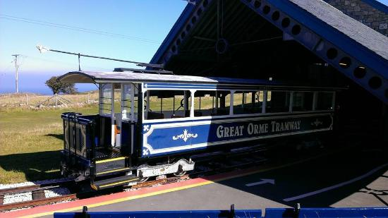 Wildings Hotel : Great Orme tram