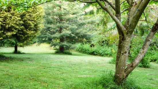 Trengilly Wartha Country Inn: Garden
