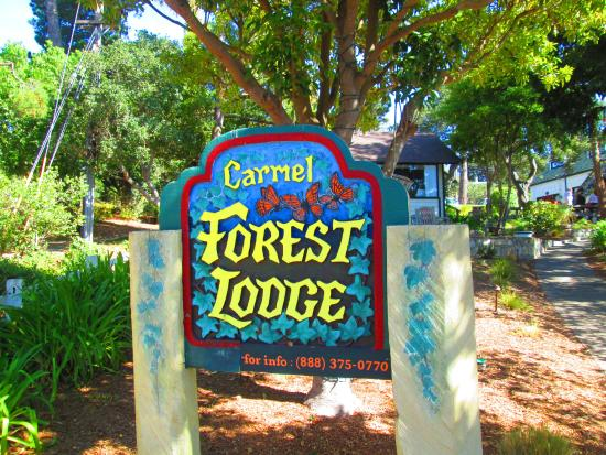 Forest Lodge: business sign