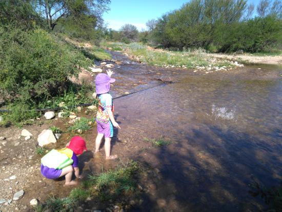 Damsedrif Guest Farm: Kids playing in the rivers