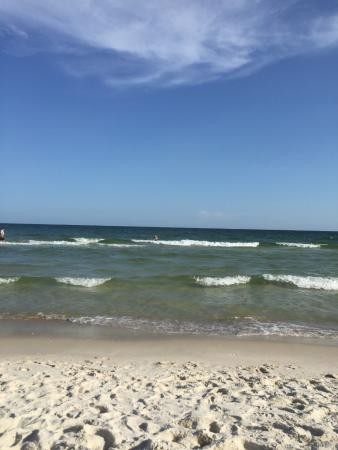 Photo of Whaler Gulf Shores