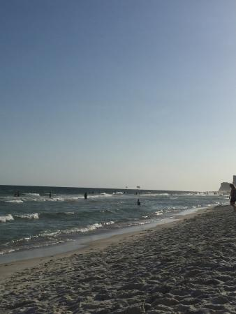 Photo of Whaler Gulf Shores