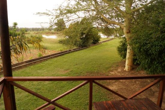Lenmore Guesthouse: From Chalet#1 verandah