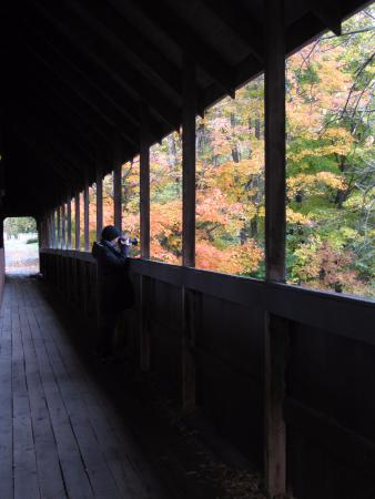 Ottaquechee River: View from the Middle Ground covered bridge in Woodstock
