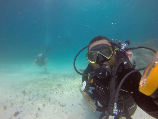 Colegio de buceo Cancun: Más de nosotros