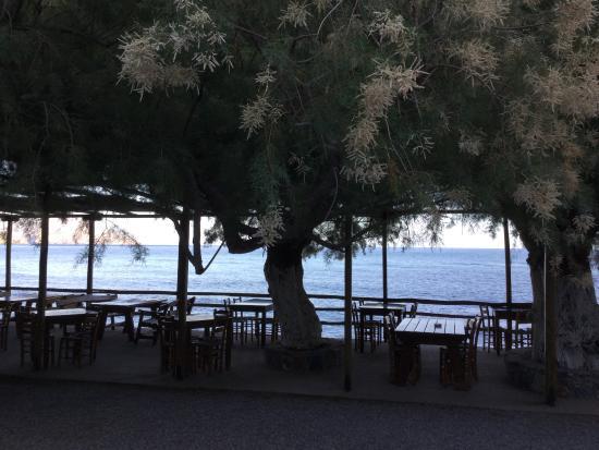 Rodakino, กรีซ: Restaurant terrace