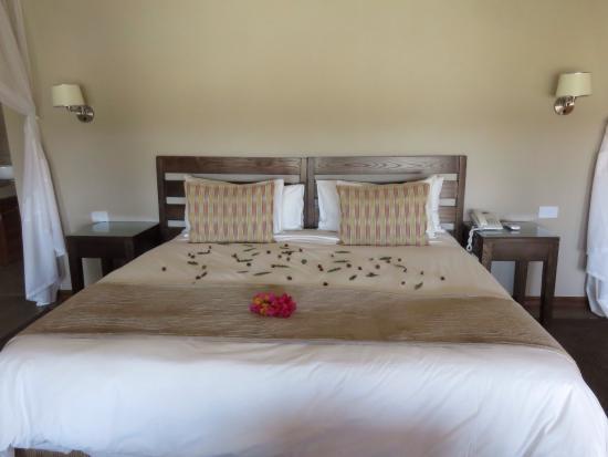 Arathusa Safari Lodge: photo0.jpg