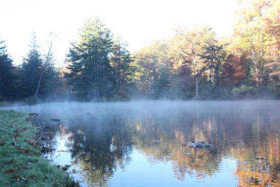 Fort Loudon, Pensilvanya: morning fog on the lake