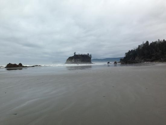 attraction review reviews ruby beach olympic national park washington