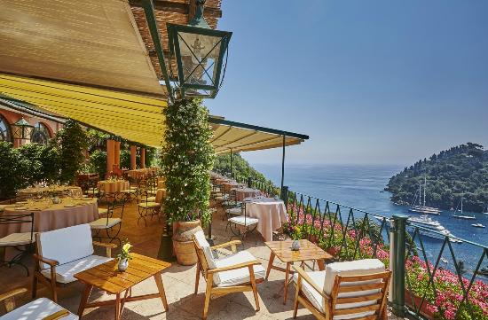 La Terrazza Restaurant overlooking Portofino - Picture of La ...