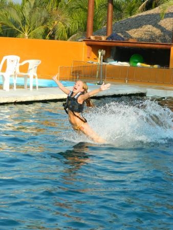 Delfiniti: Adrenalina al 100%