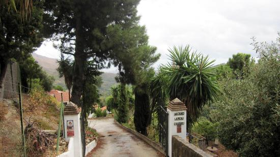 Casares Bed & Breakfast: Entry to B&B