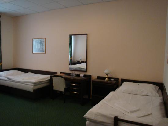 Hotel Omega Brno: номер, вид1